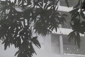 Hà Nội : Cư dân hoảng hồn vì khói bốc ra nghi ngút tại gian hàng PIZZA POMPEII