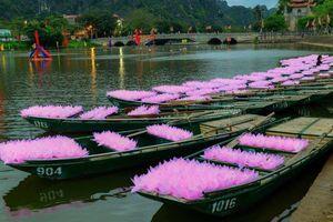 Ninh Bình: Lễ cầu quốc thái dân an và hoa đăng ở cố đô Hoa Lư