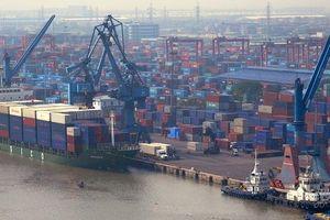 Xuất khẩu hàng hóa sang EU: Chinh phục thị trường bằng chất lượng