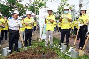 Sóc Trăng hưởng ứng chương trình trồng 1 tỷ cây xanh