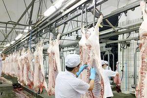 'Lộ diện' những doanh nghiệp chăn nuôi lãi đậm nhờ giá thịt lợn tăng cao