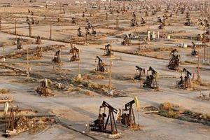 Sản lượng đá phiến của Mỹ cao có thể châm ngòi cho cuộc chiến giá dầu với OPEC?
