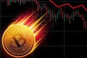 Bitcoin bất ngờ rớt vực, kéo cả thị trường tiền số vào sắc đỏ lao đao