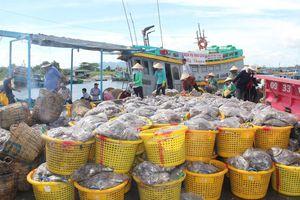 Ngăn chặn tàu cá đánh bắt vùng biển nước ngoài