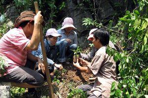 Quy hoạch bảo tồn đa dạng sinh học