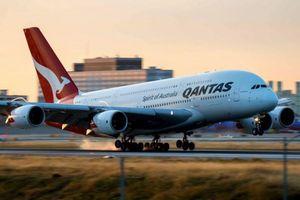 Vé máy bay giá gần 800 triệu USD