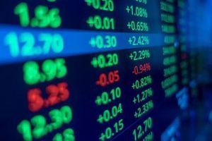 Tạo cung cầu giả tạo, thao túng cổ phiếu một cá nhân bị xử phạt 550 triệu đồng