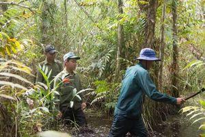 Cà Mau: Gần 8.000ha rừng tràm ở cấp báo cháy cực kỳ nguy hiểm