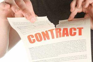 Hủy ngang hợp đồng bảo hiểm: Thiệt hại không chỉ ở khách hàng