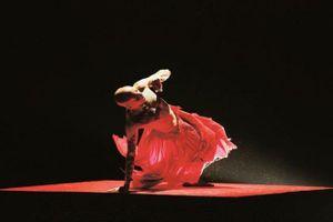 Gặp tuồng khi xem múa đương đại