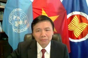 Việt Nam chủ trì phiên họp trực tiếp về tiến trình bầu cử và an ninh của Somalia
