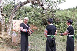 Trà Việt, từ đời thường đến tín ngưỡng dân gian
