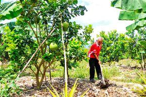 Huyện Khánh Vĩnh: Nỗ lực giảm nghèo