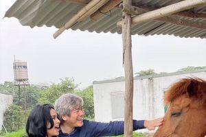 Chuyện showbiz: Diva Thanh Lam và bạn trai vui vẻ thăm trang trại nuôi ngựa
