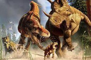 Mồ chôn tập thể tiết lộ tập tính như sói của khủng long