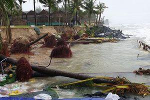 Quảng Nam: Gần 150 tỷ đồng để xây dựng 2km bờ kè biển Cửa Đại
