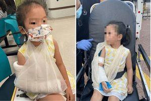 Nghe tiếng con gái 4 tuổi khóc thất thanh, mẹ chạy ra thì phát hiện cảnh đau lòng