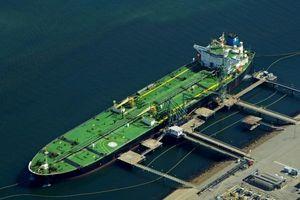 Dầu thô giảm giá trở thành vấn đề 'đau đầu' với OPEC?