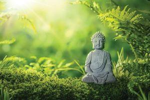 Lắng nghe lời Phật dạy về 4 nỗi khổ lớn nhất đời người, ai cũng nên biết để vượt qua