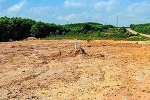Xã tự phân lô đất trồng rừng thành đất nền