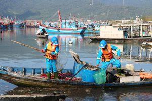Ô nhiễm tại âu thuyền Thọ Quang: Giám đốc Sở TN-MT Đà Nẵng nói gì?