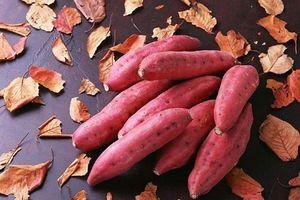 Khoai lang - thực phẩm có thể giúp phòng ngừa ung thư