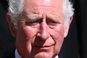 Thái tử 'muốn gặp Harry' nhưng lịch trình của hoàng tử 'không cho phép'