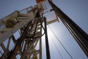Các công ty nhỏ đổ xô mua tài sản của 'Big Oil'