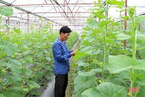 2 năm, người dân Hà Tĩnh 'hấp thụ' gần 500 tỷ đồng chính sách hỗ trợ xây dựng nông thôn mới