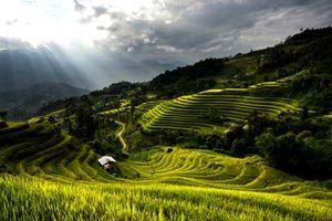 Ngất ngây với vẻ đẹp thiên nhiên, con người Hoàng Su Phì