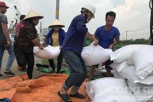 Người dân giải cứu 50 tấn gạo giúp tài xế xe container bị lật trước trời mưa