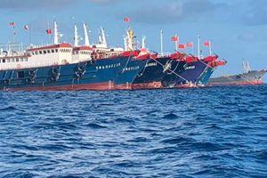 'Đại ngư thuyền' Trung Quốc đánh cá, tàn phá biển và bá quyền đại dương