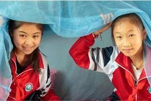 Ngày thế giới phòng chống sốt rét (25/4/2021): Đạt được mục tiêu không còn bệnh sốt rét