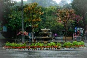 Hồ Gươm đẹp huyền ảo, lãng mạn trong lất phất mưa