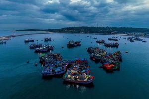 Hải Phòng: Người dân Bạch Long Vĩ bỏ phiếu bầu cử ngày 22/5