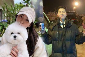 Song Joong Ki - Song Hye Kyo của hiện tại: Hạnh phúc như chưa từng có cuộc chia ly!