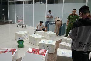 Lâm Đồng: Phát hiện 214kg dâu tây nghi của Trung Quốc 'tuồn' vào Đà Lạt