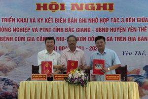 Bắc Giang: Xây dựng vùng an toàn dịch bệnh cho gia cầm ở Yên Thế
