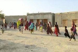 Thư viện lạc đà cho trẻ em vùng sa mạc Pakistan