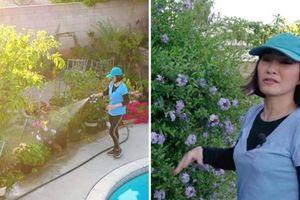 Hậu ly hôn, Hồng Đào sống trong biệt thự sân vườn ngập hoa