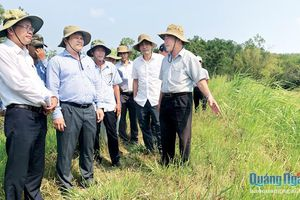 Phó Chủ tịch UBND tỉnh Trần Phước Hiền: Kiểm tra công trình, dự án thủy lợi ở huyện Bình Sơn