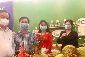 Nông sản Việt Nam có mặt trên 186 quốc gia và vùng lãnh thổ