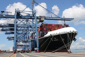 Bắc cầu để hàng Việt xuất khẩu ra thế giới trong thời đại kinh tế số