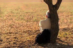 Truyện liêu trai: Thân già cô đơn