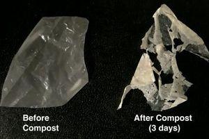Sáng kiến 'xanh' giúp giảm rác thải nhựa