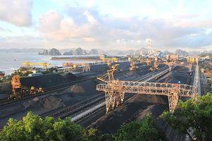 TKV thông qua Đề án cải tạo cảnh quan môi trường Nhà máy tuyển than và cảng Cửa Ông