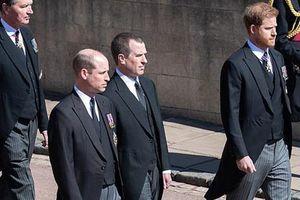 Harry 'sốc trước sự tiếp đón lạnh nhạt của hoàng gia'