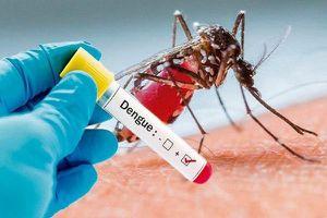 Mùa mưa, chủ động phòng sốt xuất huyết từ thói quen sinh hoạt