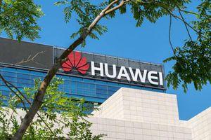 Huawei 'ngấm đòn' trừng phạt của Mỹ
