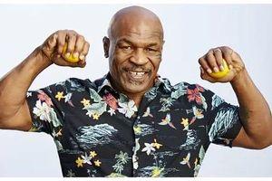 Mike Tyson chuẩn bị tái đấu kình địch Lennox Lewis